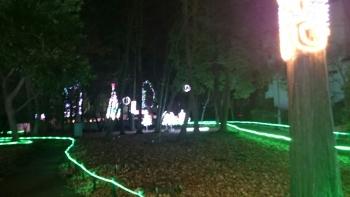 石橋グリム公園イルミネーション2