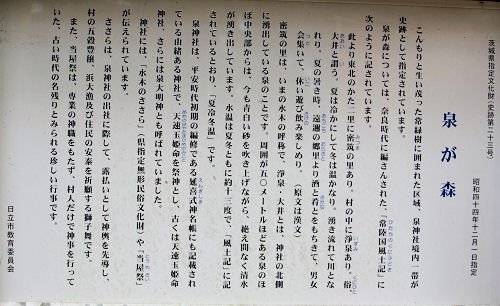 141225izumi11.jpg