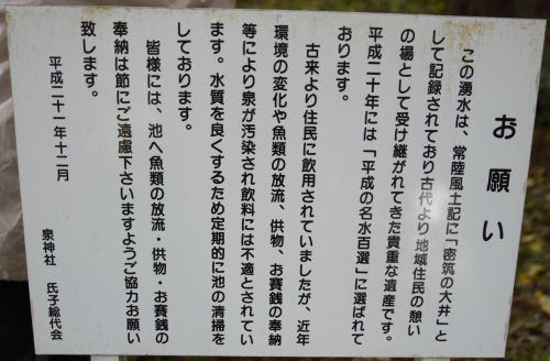141225izumi13.jpg