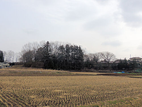 150302kasumi46.jpg