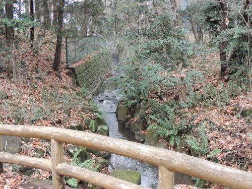 150502kashiwa06.jpg