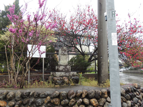 150502kashiwa38.jpg