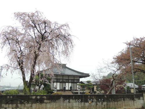 150502kashiwa48.jpg