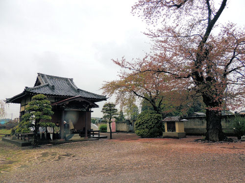 150502kashiwa50.jpg