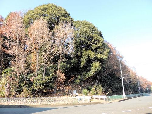 150502kashiwa65.jpg