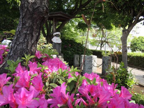 150505yoshitaka08.jpg