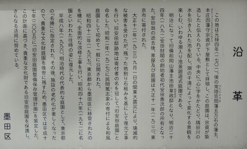150512ryougoku61.jpg