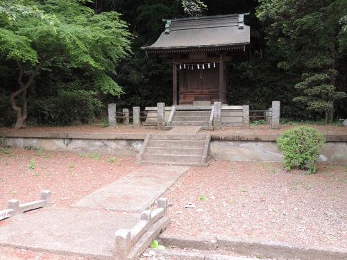 150526negishi29.jpg