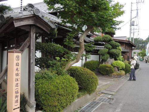 150526negishi46.jpg