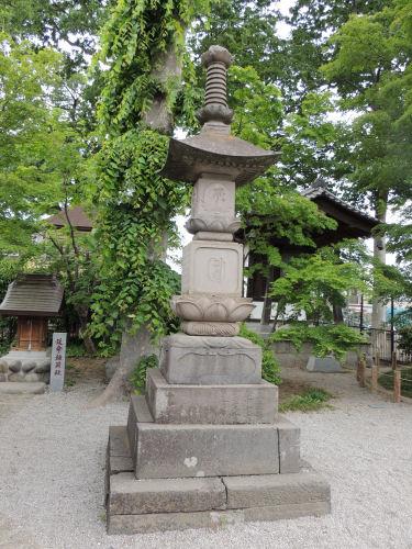 150526negishi61.jpg