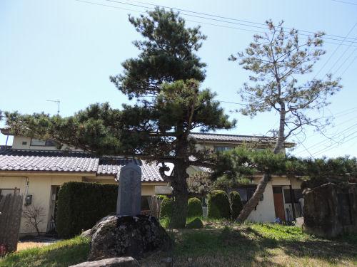 150601iwamurada65.jpg