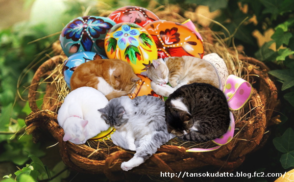 easter-basket-cat1.jpg