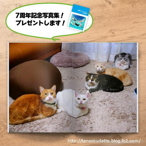 photobook.jpg