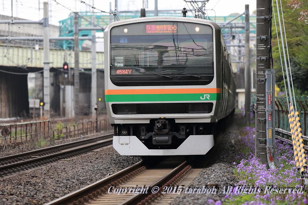 20150419-5D_00508.jpg