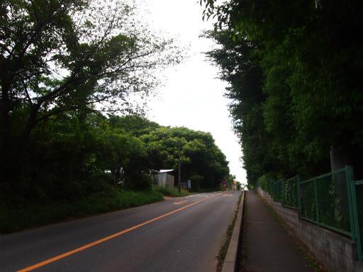 20150530・散歩空11