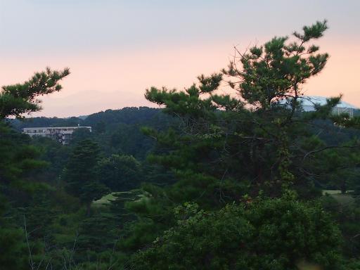 20150810・荒幡富士2-03