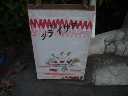 20150822・広谷諏訪神社の祭り・地口行灯07