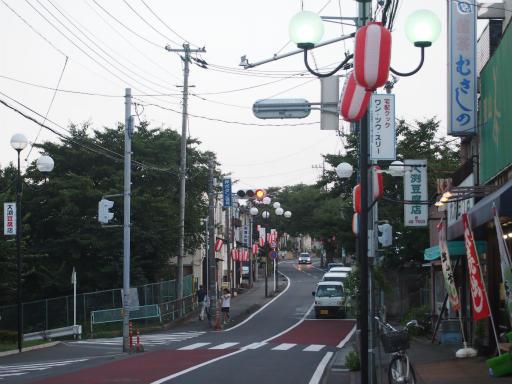 20150822・広谷諏訪神社の祭り04