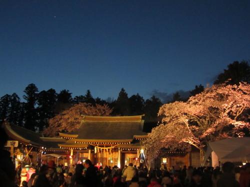 桜山0001_5