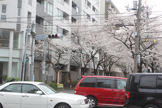 blog_000005107.jpg