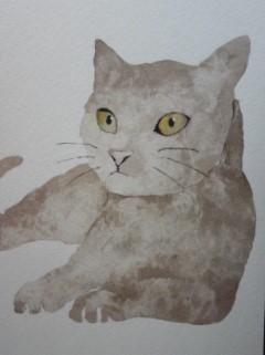 猫150306_1817~03