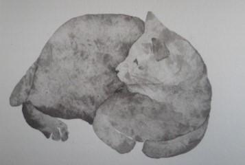 猫150520_1546~01