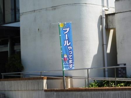 1木曽川祖父江緑地プール3