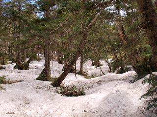 s07雪道