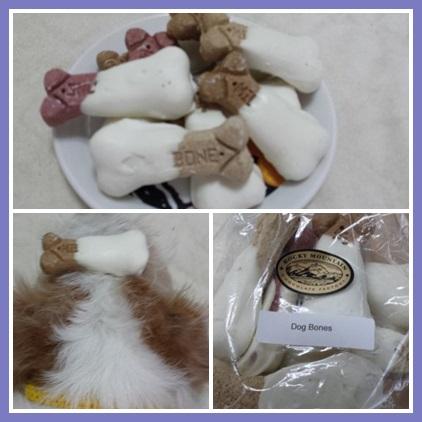 cats678899987.jpg