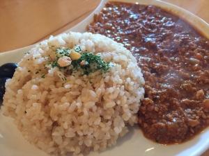 マタタビcafe 玄米ドライカレー2