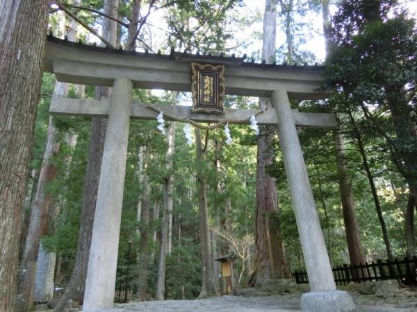 2015-1-11 熊野詣で 022