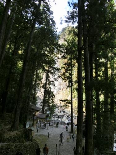 2015-1-11 熊野詣で 023