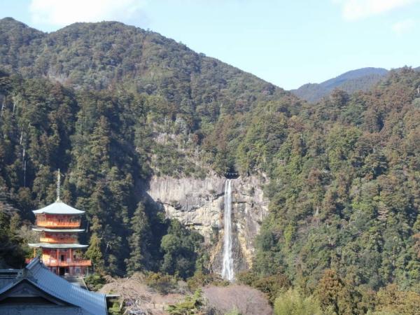 2015-1-11 熊野詣で 053