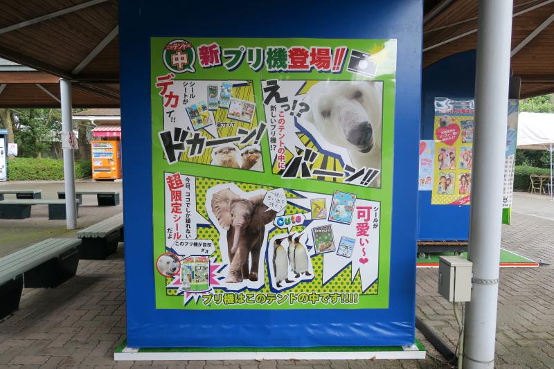 とべ動物園・オリジナルプリクラ