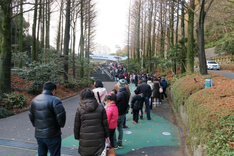 2015年1月3日、開園前の愛媛県立とべ動物園の様子