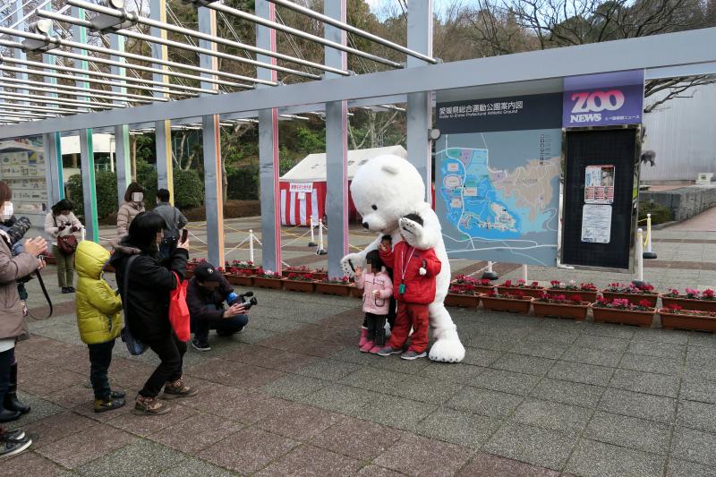 とべ動物園・お年玉プレゼントイベント会場のすぐ横にシロクマさん登場