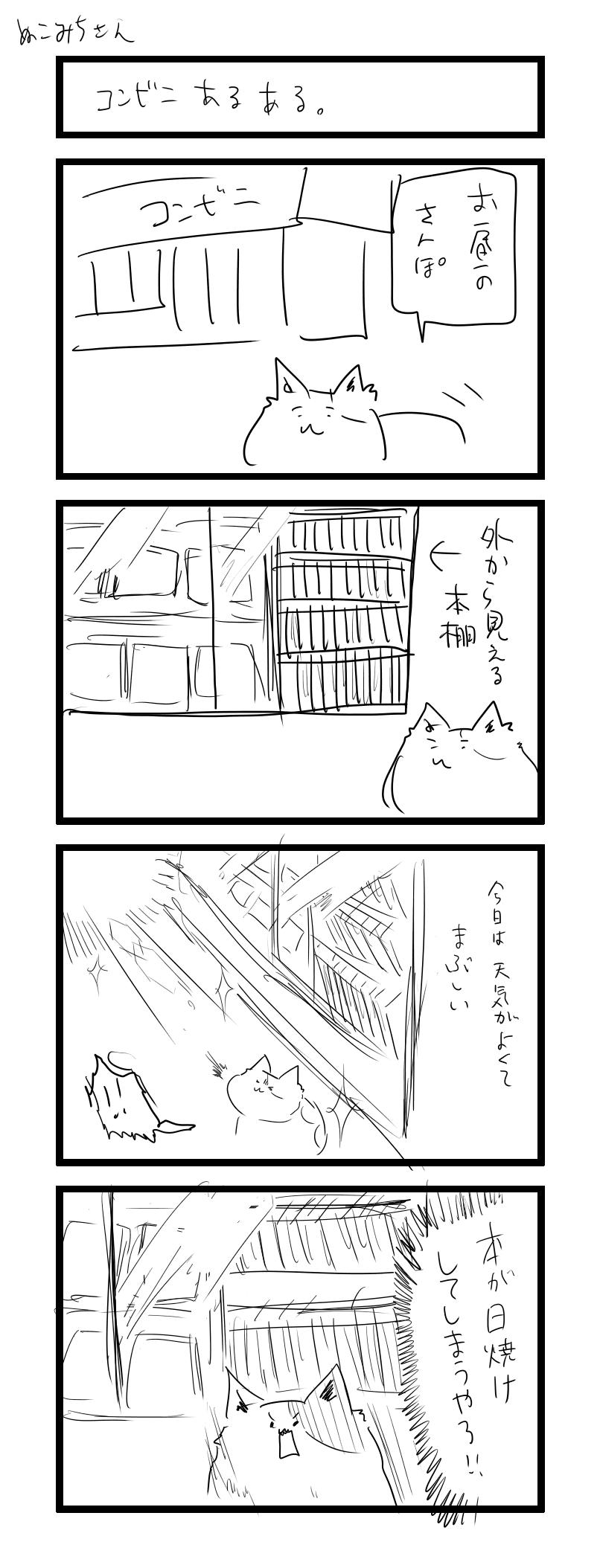 ぬこみちさん6