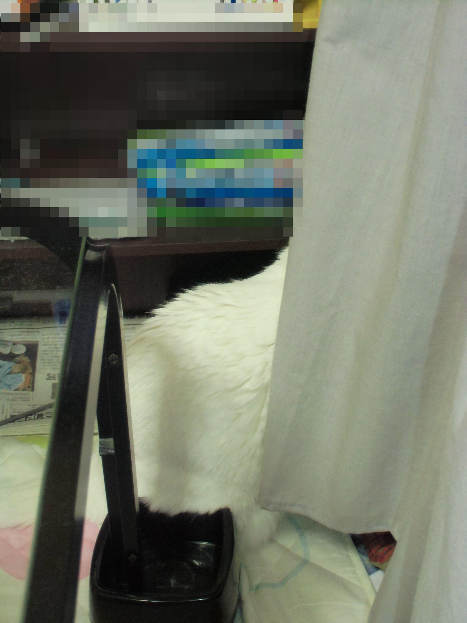 CIMG0846-2.jpg