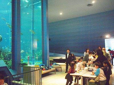 400三保の水族館