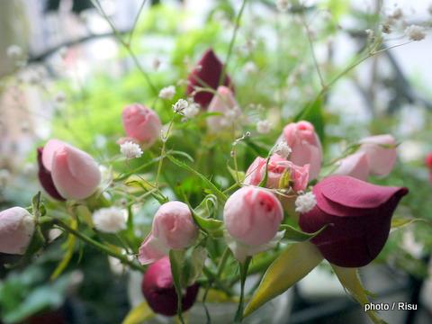 薔薇の花束を長持ちさせる方法