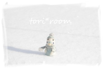 雪とインコちゃん