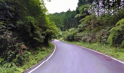 箱根やまなみ林道1
