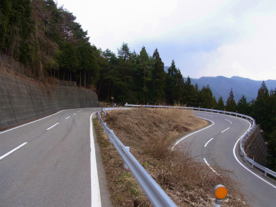 tsuru_6.jpg