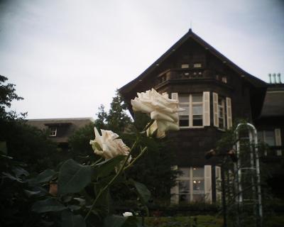 洋館と薔薇・旧古河庭園:R2