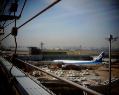 はるかに東京タワー・羽田空港:Entry