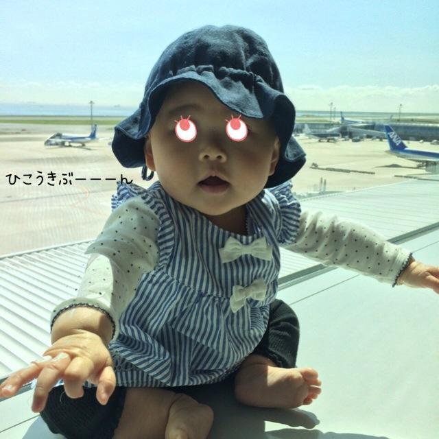 みぃちゃんと飛行機