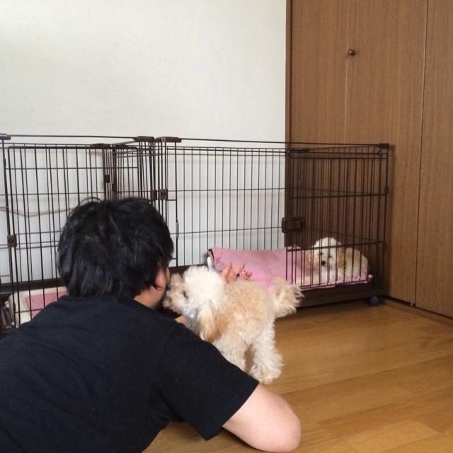 2015.5.21.朝元気のないココ
