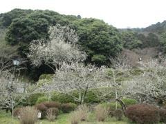 春のお出掛けの記録6