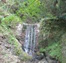 テクテク森林浴6