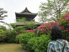 吉香公園でお花見2